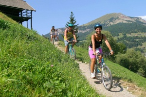 Mountain Bike, e-bike and road bikes