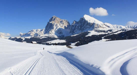 Cross-country skiing in Val Gardena and Alpe di Siusi